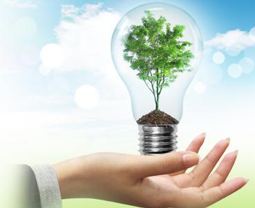 บริษัท สงขลาไบโอแมส จำกัด ข่าว การจัดการพลังงาน