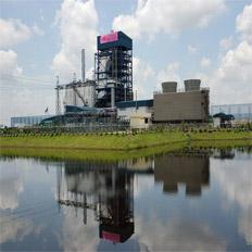 บริษัท สงขลาไบโอแมส จำกัด ข่าว General knowledge about the Power Plant.